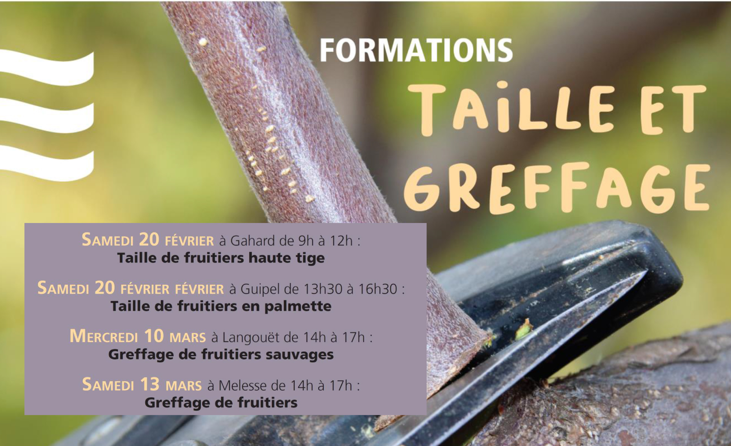 Formation taille et greffage